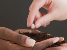 mani che donano, mani che ricevono